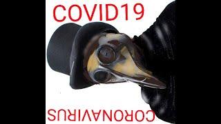 Carnivores and the Coronavirus