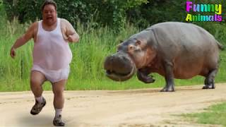 Funny Animals Scaring People! Hilarious! Funniest Animals Video 2018