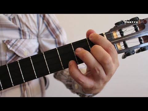 Cuatro Venezolano - Cómo tocar Joropo Pajarillo en Re menor Básico