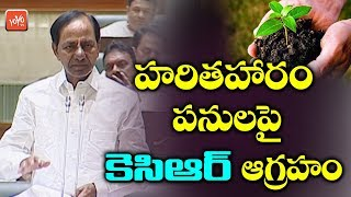 CM KCR Angry on Haritha Haram in Assembly | Telangana News