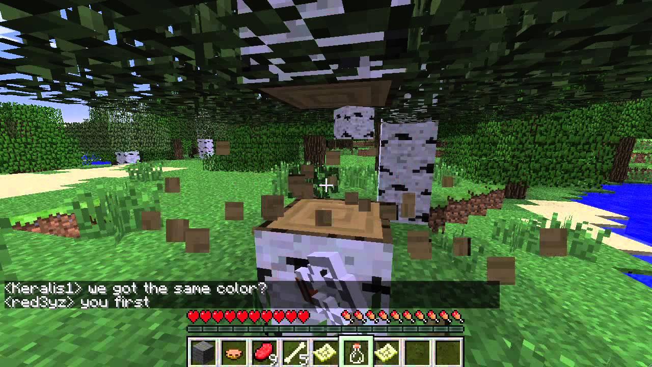 Minecraft Battle Royale Joe