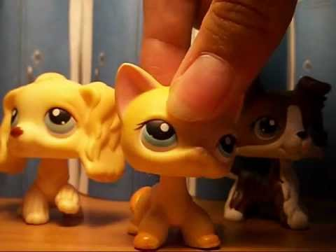 LPS - Brooke Hayes: Popular (For SophieGTV)