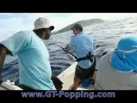 GT popping in Fiji on Kadavu with Matava