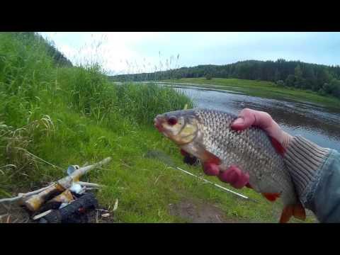 рыбалка на болонскую удочку весной