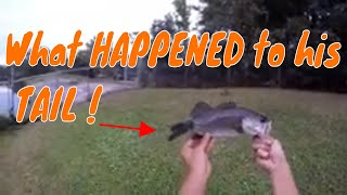 BIG Mystery and a Deformed TALKING BASS. OUTDOORS Fishing Shoutout video. How to catch fish in fall.