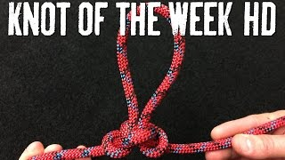 Create a Tie-In Point with the Alpine Butterfly Knot - ITS Knot of the Week HD