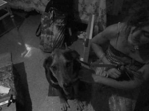Perro i mujer