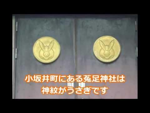 すわポン巫女隊☆メンバー名が決定しました!