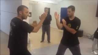 Wing Chun cross guard attack with sweep and punch entry-SiFu Jelovac