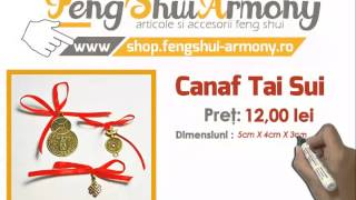 Canaf Tai Sui - FengShui