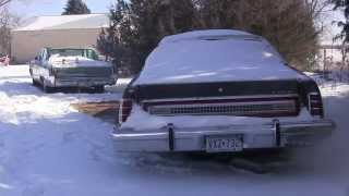 Cold Blooded 1978 Ford LTD