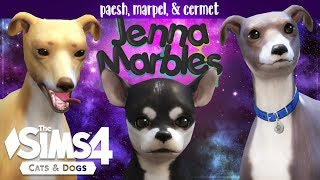 Paesh, Cermet & Marpel | Creating Jenna Marbles' Dogs in the Sims 4
