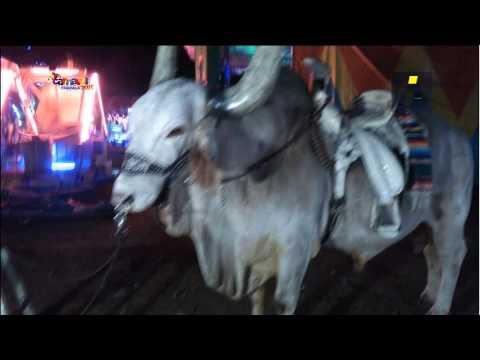 Carnaval de Chapala 2015