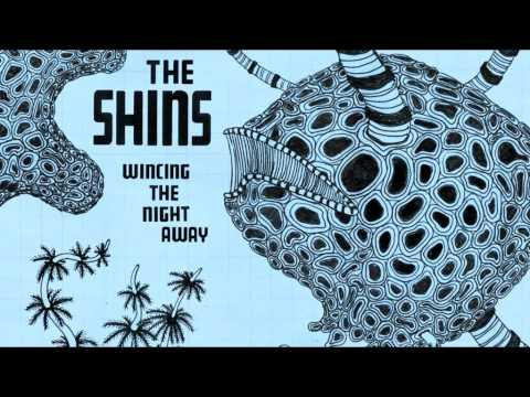 Shins - Sleeping Lessons
