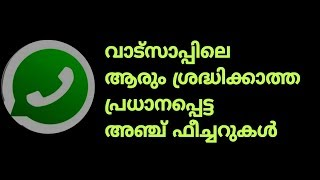 whatsapp top five hidden featurs you must know