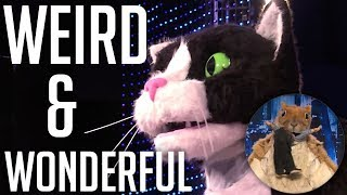 ALL Weird & Wonderful Auditions on America