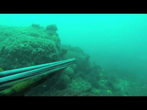 Spearfishing in Spain