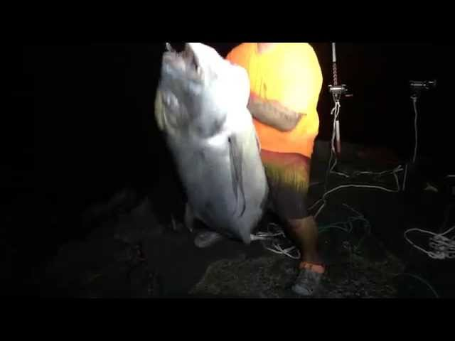 Ulua Fishing Big Island (June 2014)