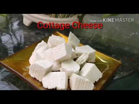Homemade cottage cheese/ Homemade is the best/ Easy cooking and tips