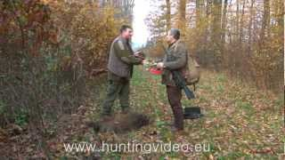 Wild Boar and Red Deer Drive Hunting In Hungary Jánosháza (HD)