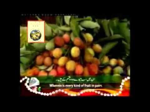 Tilawat Surah Rahman (qari Sadaqat Ali) 01.flv video