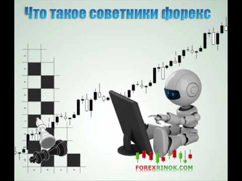 Как написать торгового робота для форекс