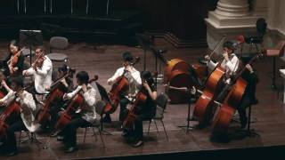 Rococo Variations for Cello and Orchestra