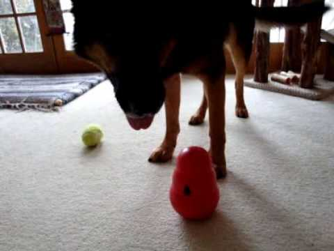 Magic-the-Genius Un-Puzzles the Kong Wobbler