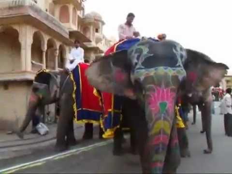 Gangaur Festival Jaipur India