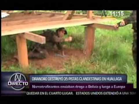 Dirandro destruyo 35 pistas clandestinas en Pichis Palcazu