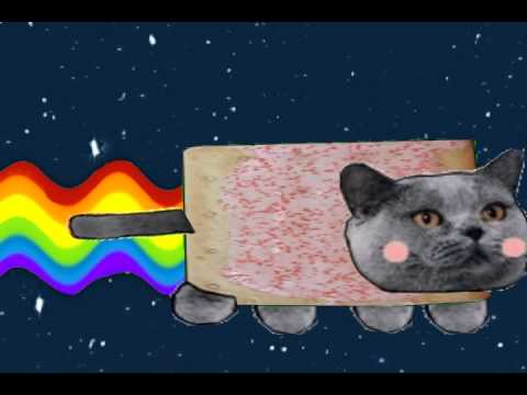 Nyan Cat In Real Life Youtube