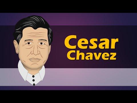 Cesar Chavez (Biography for Children) Youtube for Kids (Cartoons) Animation Cartoon Network