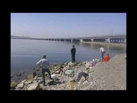 рыбалка май владивосток