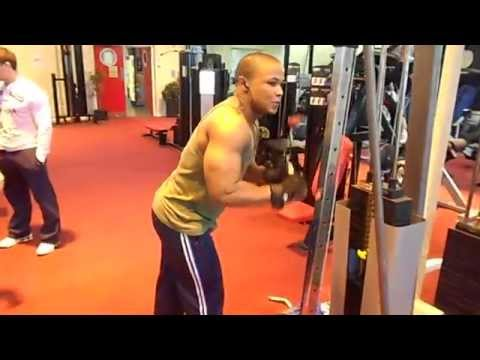 Epic Bodybuilding Motivation  -  Triceps Holocaust video