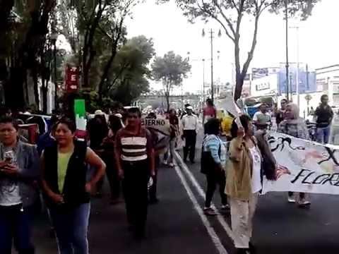 Xochimilco en contra la delincuencia(3)