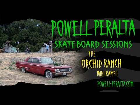 Powell Peralta Skateboard Sessions - Orchid Mini Ramp I