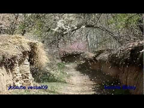 Ahang Raghs - Shad Irani  «کوچه بالائی «این آهنگ رقص داره video