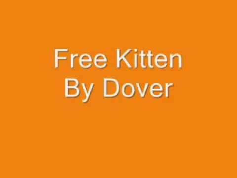 Dover - Free Kitten