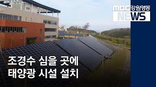 R]발전소 조경 부지에 태양광 시설 말썽