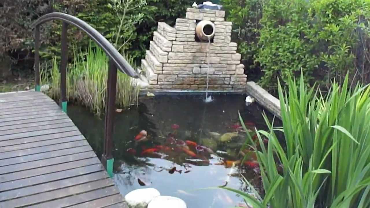 cascade du bassin et poissons film au mois de mai 2012. Black Bedroom Furniture Sets. Home Design Ideas