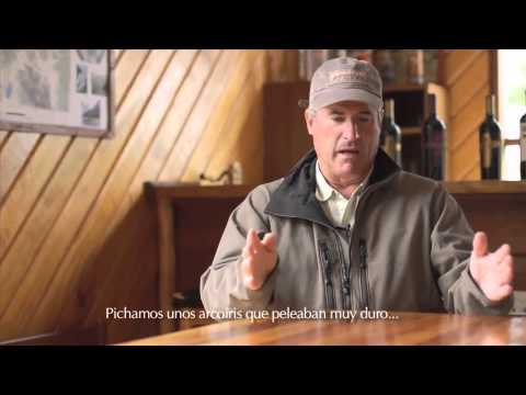 Fly Fishing Los Rios, Los Lagos - Chile Travel (Brian O'Keefe)