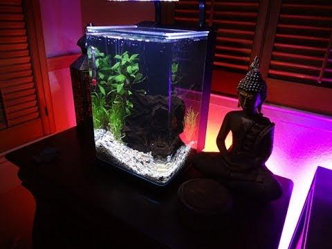 Marineland Contour5 Aquarium Hd Part 1 Youtube