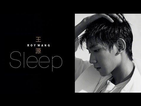 【TFBOYS王源Roy】《Sleep (幻想)》首支英文单曲 自制歌词版【KarRoy凯源频道】