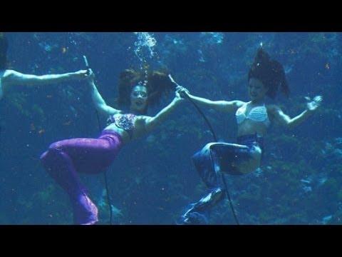 Sirenas en plena acción