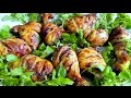 How to cook Chicken & BBQ Sauce recipe Barbacue Food