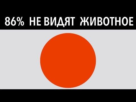86% НЕ ВИДЯТ ЖИВОТНОЕ В КРУГЕ! 7 тестов для проверки интеллекта