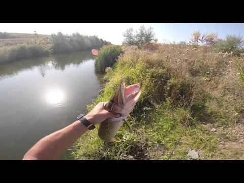 макеевка канал рыбалка