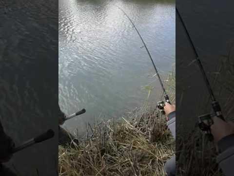 рыбалка на брандвахте в новосибирске