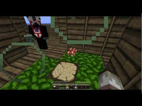 Minecraft: Survival Island w/TechGamer Ep4
