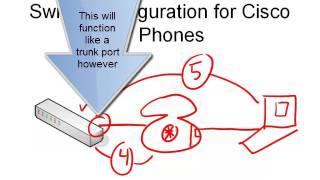 6. Switch Configuration for Cisco IP Phones